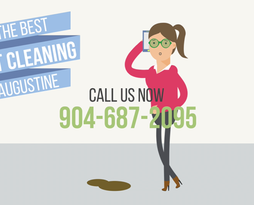 St Augustine Carpet Cleaners Florida Youtube